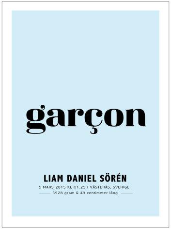 GARCON