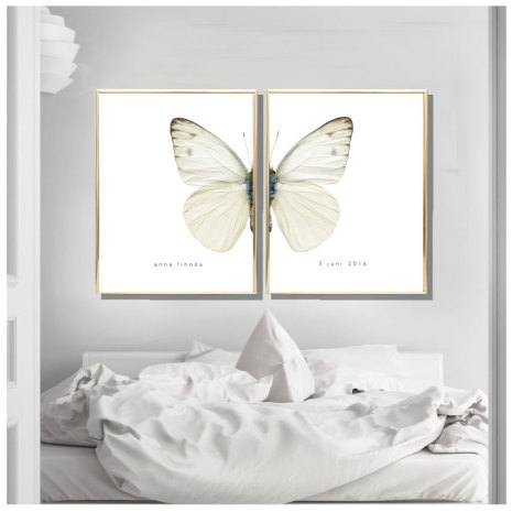 PARPOSTERS - BUTTERFLY WHITE