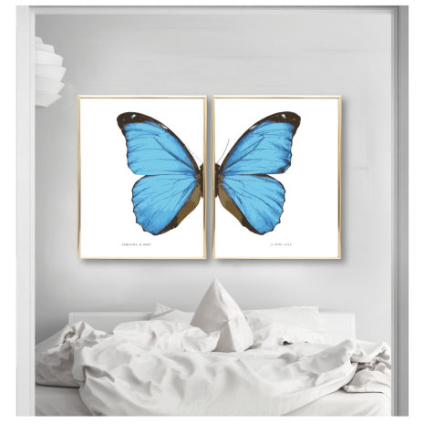 PARPOSTERS - BUTTERFLY