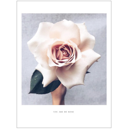 BIG ROSE ARTPRINT